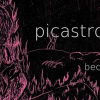 Picastro's Well Kept Secrets