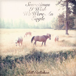 Bill Callahan - Sometimes I Wish We Were An Eagle (Drag City)
